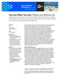 You Are What You Eat: Plastics and Marine Life - PBS