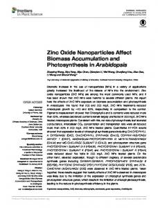 Zinc Oxide nanoparticles Affect Biomass