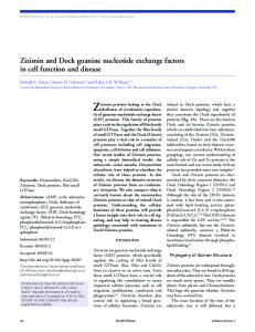 Zizimin and Dock guanine nucleotide exchange factors in cell function ...