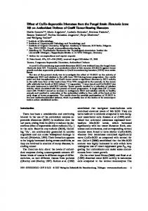 Zn-Superoxide Dismutase from the