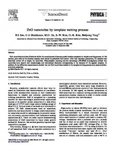 ZnO nanotubes by template wetting process - NESEL