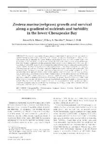 Zostera marina (eelgrass) growth and survival along ... - Inter Research